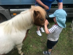 jacob and horse